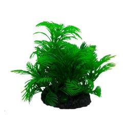 Tropical plant 7cm series