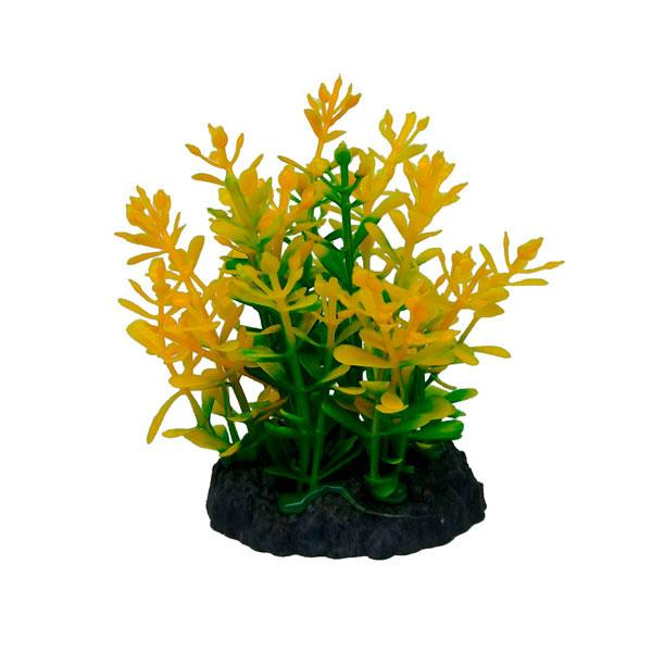 Tropical plant series